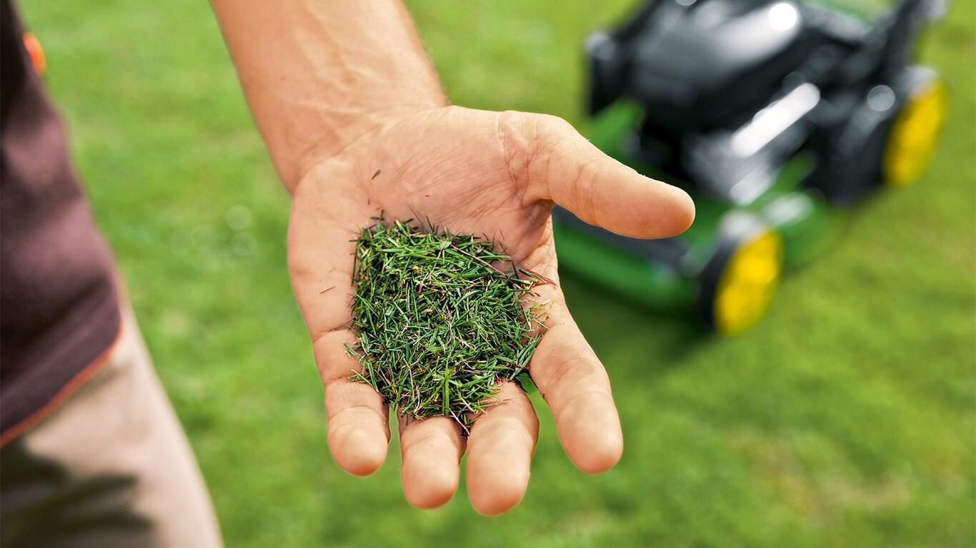 Fertilizante natural. Los residuos ricos en nitrógeno regresan al suelo como abono fertilizante natural.